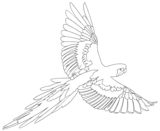 pin von jackie christy auf coloring pages  ausmalbilder