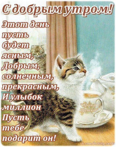 Открытки и стихи доброе утро мужчине, картинки