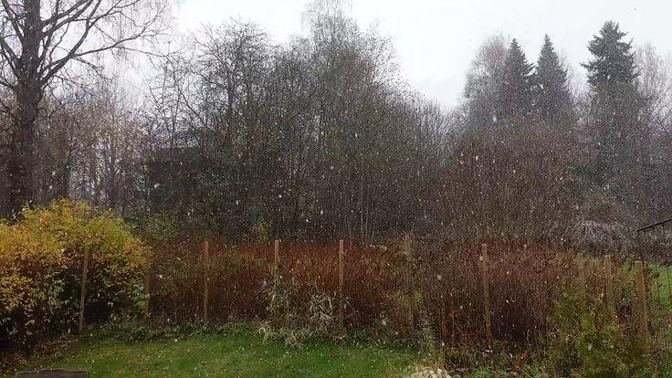 Ensimmäiset lumihiutaleet talvelle 2017-2018