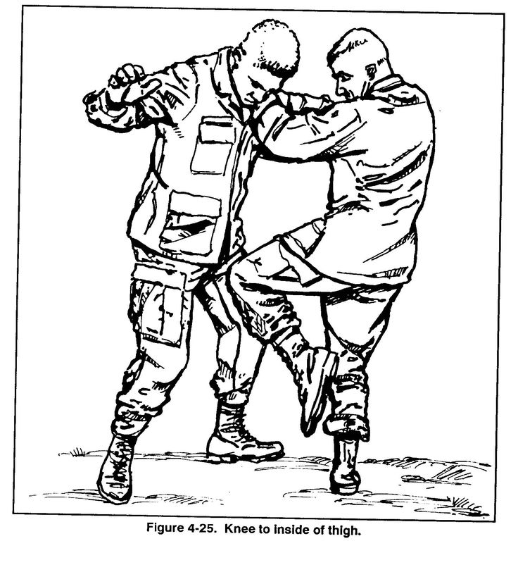536 best Combatives (Western, Modern, and Military style