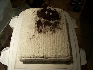 2011 Groundhog Cake.  Looks more like an alien don't you think?  Ok, Ok, I'm obviously not an artist! lol