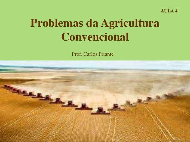 Problemas da Agricultura Convencional Prof. Carlos Priante AULA 4