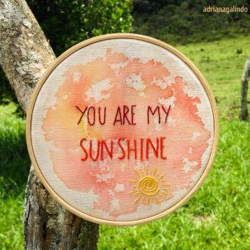 Bordado com Aquarela /  Embroidery and watercolor /  You are my sunshine /  drigalindo1@gmai.com