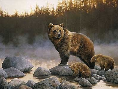 The Stillness - Grizzly and Cubs - Bonnie Marris - World-Wide-Art.com - $215.00