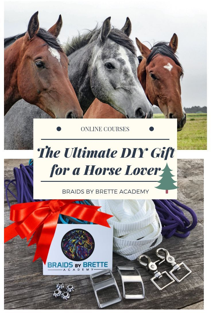 The Diy Horse Tack Gift Box Includes Materials For A Mule Tape