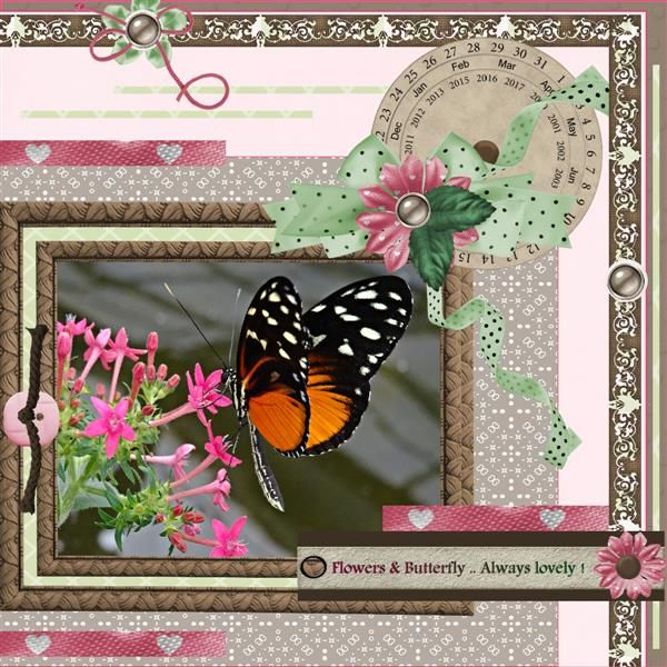 Feb 14 Flowers & Butterfly.j