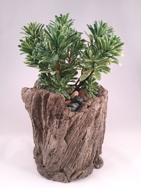 """Artificial Jade plant in one of our one of a kind handmade concrete driftwood planters filled with decorative river rocks. approximate dimensions are 5.5"""" wide and 8.5"""" high. Due to possible damage du"""