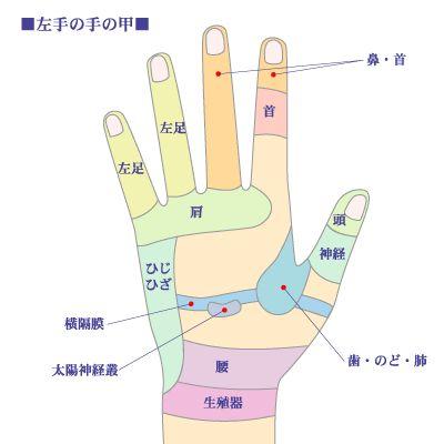 左手の手の甲の画像に、対応する体の部位が記されている画像。