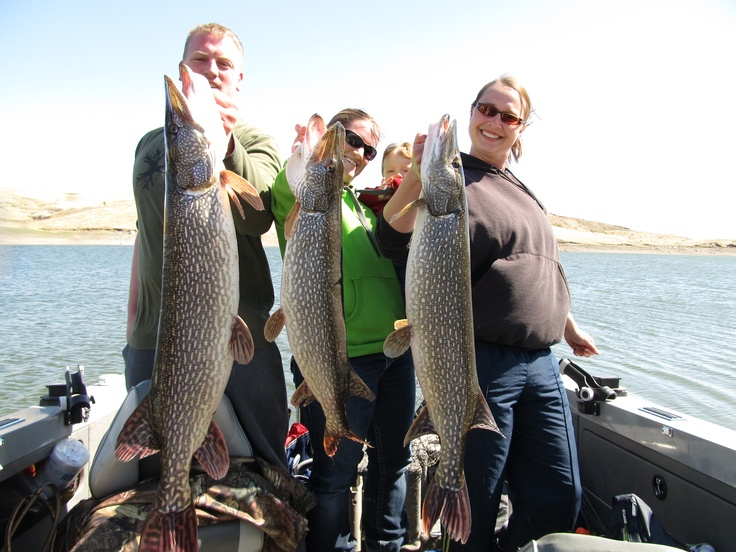 17 best images about fishing in south dakota on pinterest for Best fishing in missouri