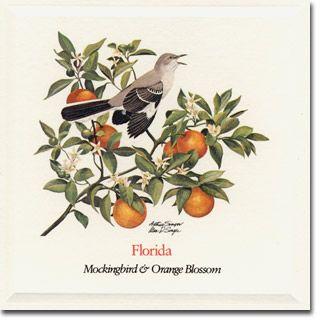 Orange Blossom and Mockingbird  - Old Florida