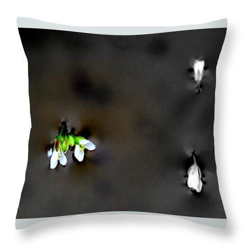 Minimalist Throw Pillow featuring the photograph Floating Blossoms On Water by Michele Hancock
