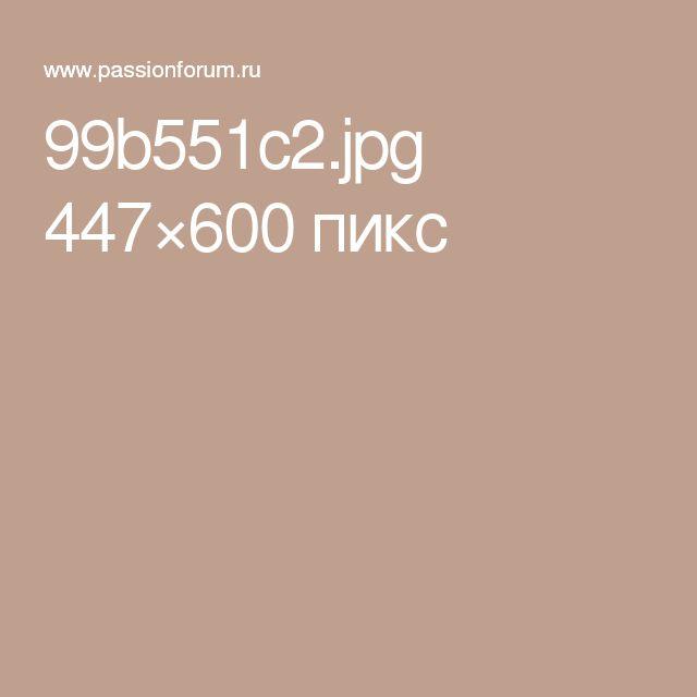 99b551c2.jpg 447×600 пикс