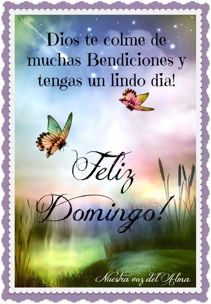 Feliz Domingo! Dios te colme de muchas bendiciones y tengas un lindo día!