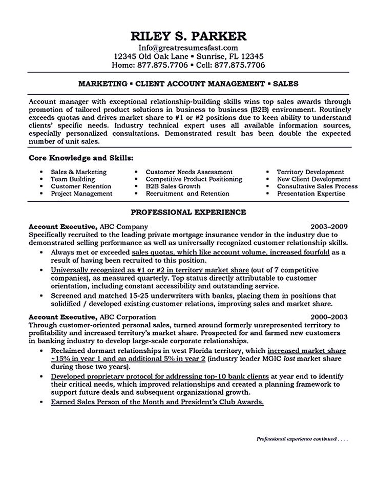 Executive Resume Click Here To Download This Business Development