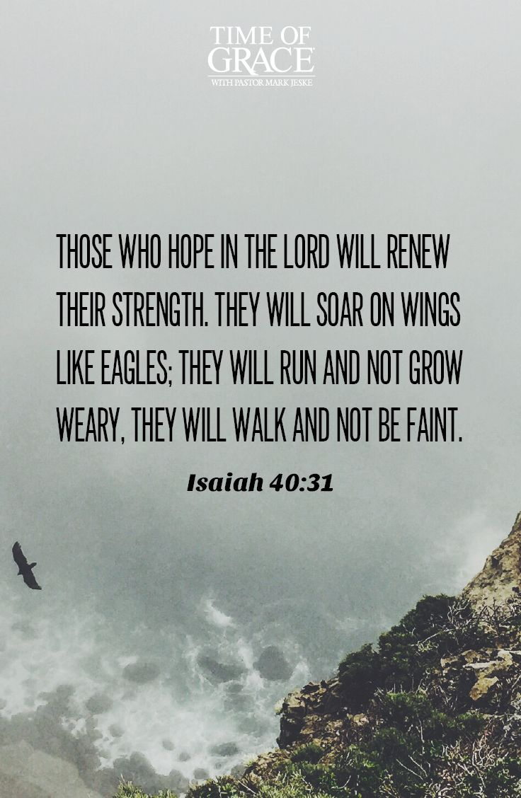 244 best scripture for life images on pinterest scriptures life hope is a gift from god that strengthens us each and every day negle Image collections