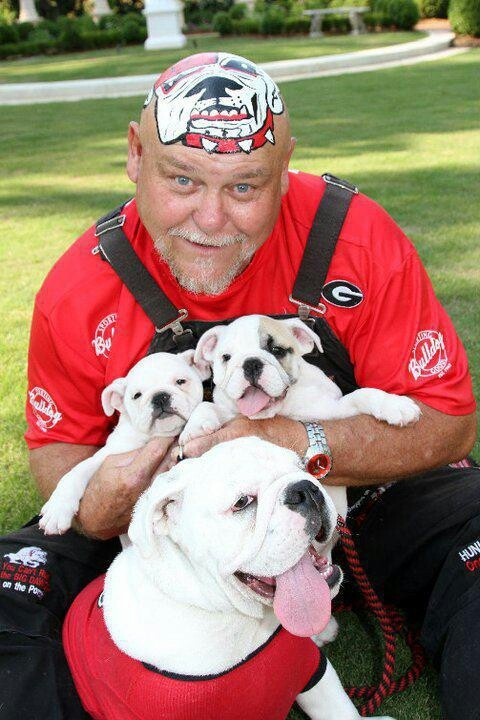 georgia bulldog fans georgia bulldawgs georgia bulldawgs pinterest the 9852