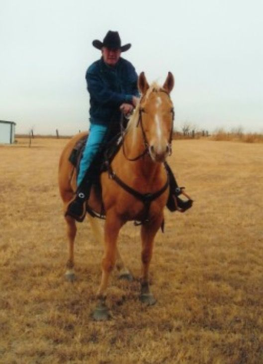 Robert Fuller recently on one of his horses. Nice palomino.