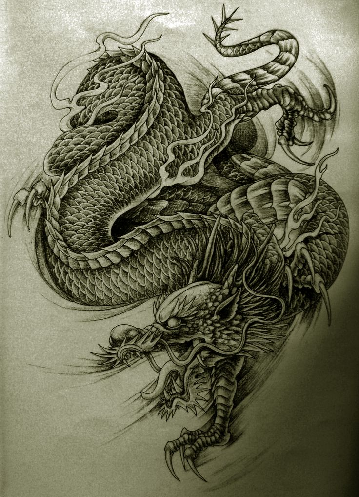 8 best drachen dragon tattoos images on pinterest kite tattoo dragon tattoo designs and. Black Bedroom Furniture Sets. Home Design Ideas