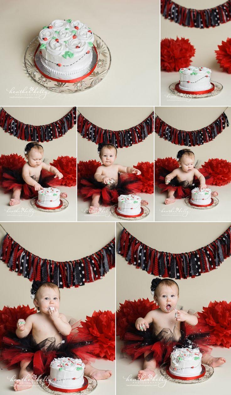 ladybug cake smash - new milford ct first birthday photographer