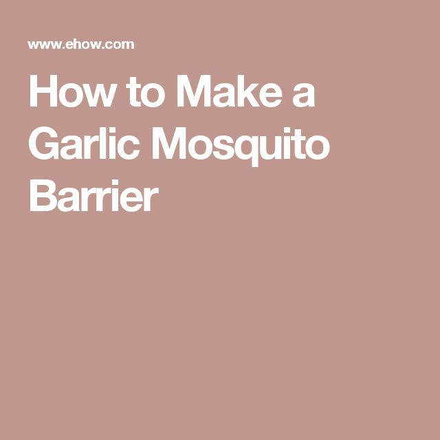 How to Make a Garlic Mosquito Barrier