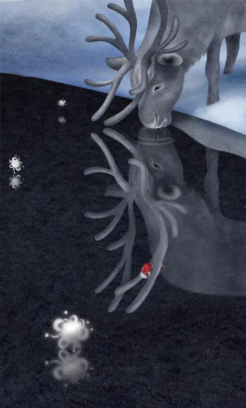 winter scenes snow images illustrations christmas reindeer birds imagenes nieve navidad animales natale neve animali disegni