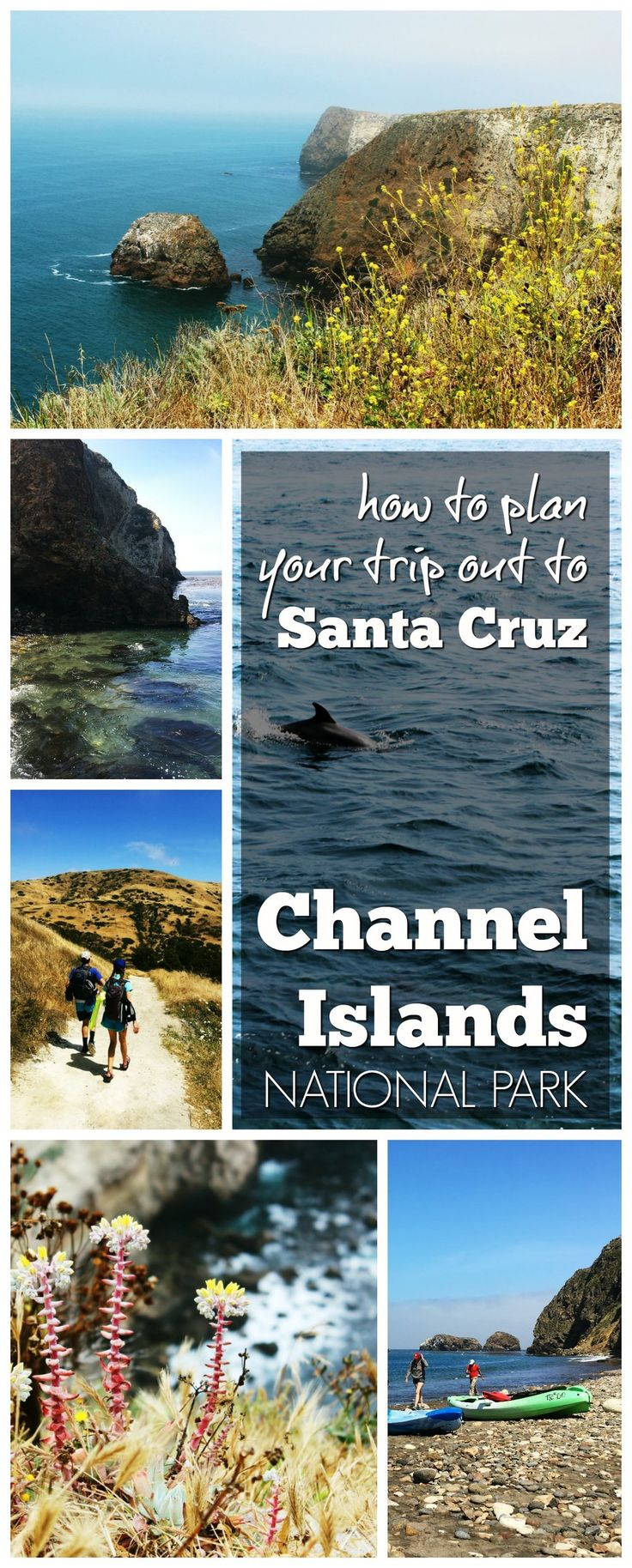 How to plan a day exploring Channel Islands National Park. Hop on the Island Packers boat to Santa Cruz for hiking, kayaking, swimming, snorkeling, scuba, plus flora and fauna only found on this island!