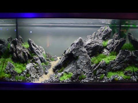 Aquascaping-Wettbewerb XL Tierwelt Magdeburg 2017 - YouTube