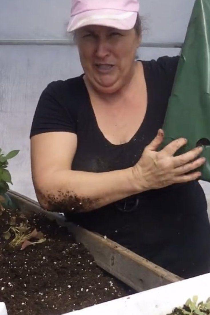 Jamais le jardinage ne vous aura semblé aussi érotique (VIDÉO)