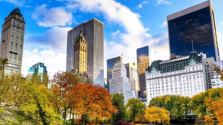 Cental Park in Fall with the GM Building and The Plaza in the background. #NYC