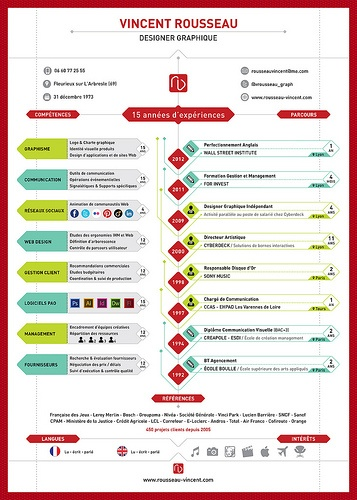 Best Visual Bios Images On Pinterest Infographic Resume - Resume best practices
