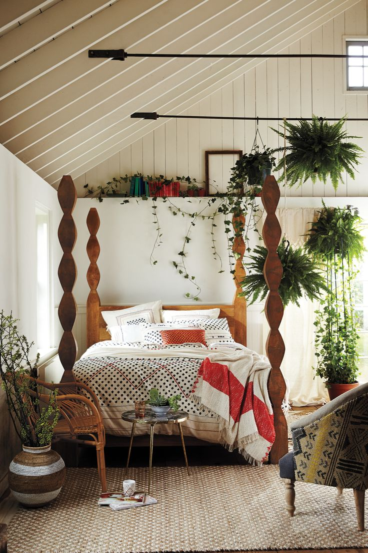 Love how the plants are suspended from the ceiling. Great way to keep away from pesky plant eating cats!