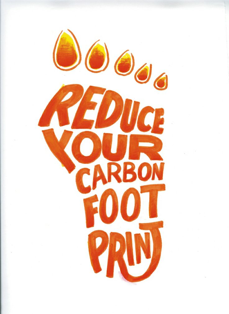 8 best Reduce Your Carbon Footprint images on Pinterest  Carbon footprint Footprints and