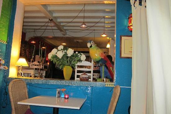 Vliegende schotel - wereldkeuken - Kasterlee
