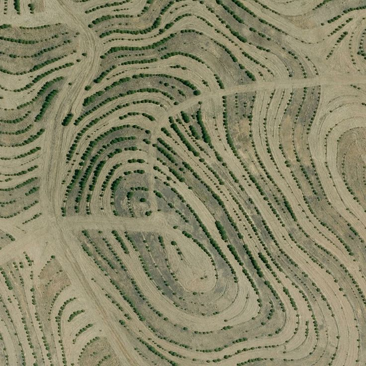 lauren mannings collection of earthpatterns found on google maps castro marim portugal 37209938