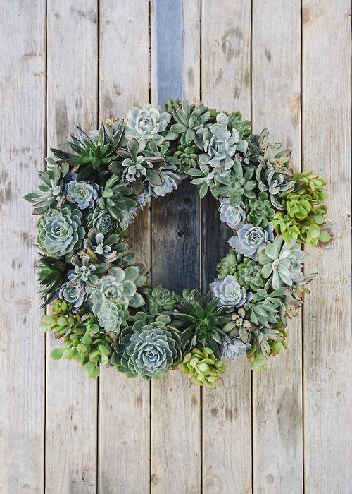 DIY couronne de plantes succulentes/grasses