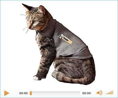 Thundershirt (cat version) to relieve anxiety in cats.