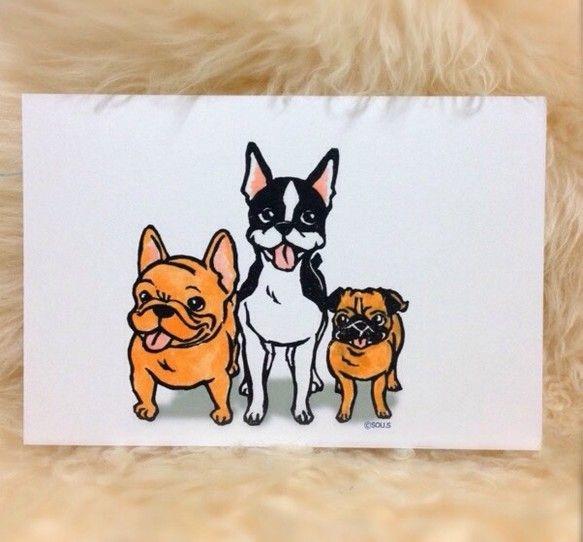 フレンチブルドック・ボストンテリア・パグの鼻ぺちゃ犬くん達のポストカード。※同デザインのものを4枚1組。|ハンドメイド、手作り、手仕事品の通販・販売・購入ならCreema。