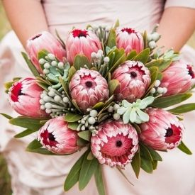 A stunning protea bouquet, koeksister cake & lots more inspiration from this South African-inspired shoot!
