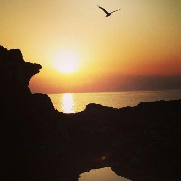 Solnedgång i rauklandskap #Fårö