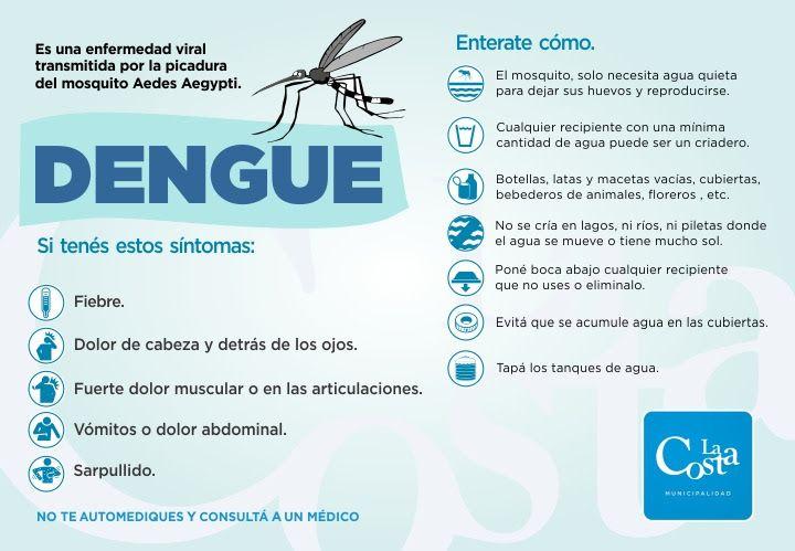 Continúan las fumigaciones contra el mosquito transmisor del dengue