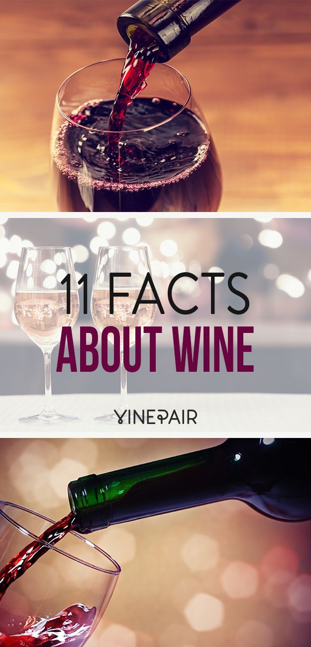 11 facts everyone should know about wine! {wineglasswriter.com/}