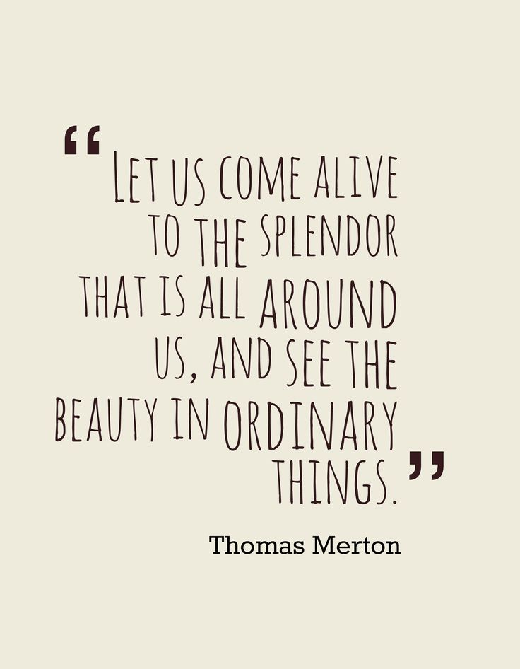 Finding beauty in this situation will help you transform it <3