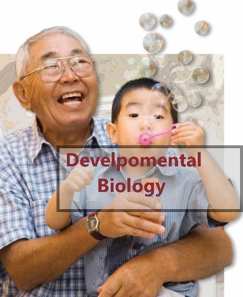 Developmental Biology Gilbert 11th Edition Pdf Free Download Pdf