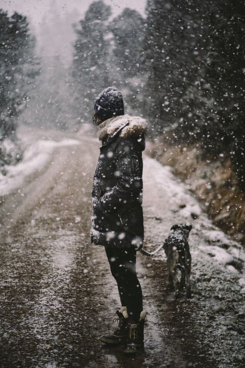 light- the way the person standing is dressed and the snow on the dog shows the coldness in the photo