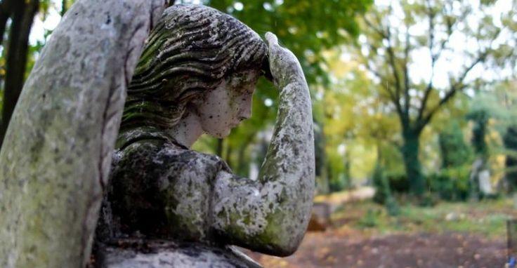 Pogrzeb Kristiny Z Mrowin Slowa Mamy Dziewczynki Lamia Serce Moja Strona M I A