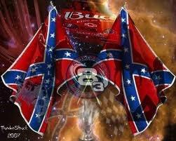 Dale Earnhart, Jr Rebel Flags