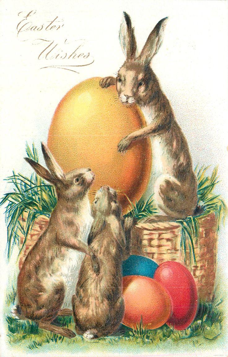 Открытки с пасхальным зайцем, открытке