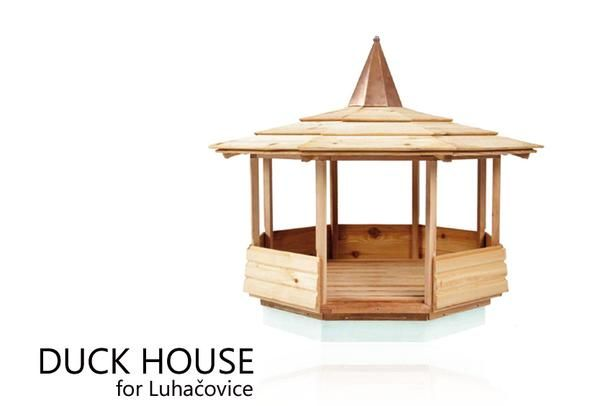 Дизайн продукта ФМК УТБ - Сайт-специфическая конструкция: Duck дом