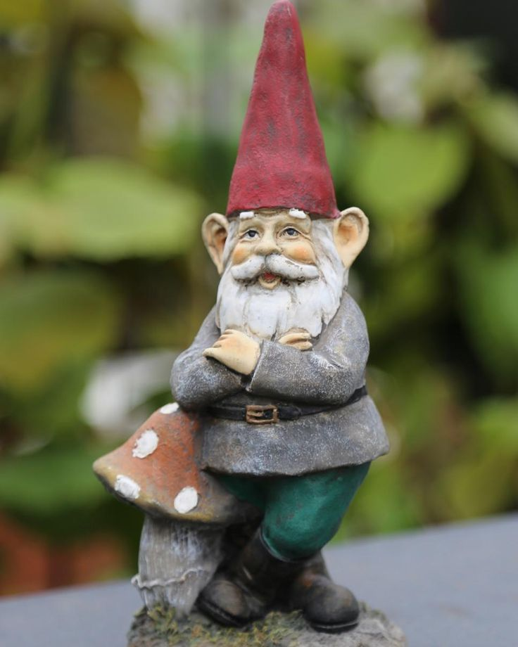 Funny Gnomes: Best 25+ Garden Gnomes Ideas On Pinterest