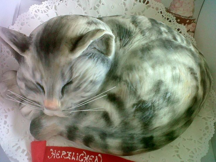 Katze als Torte  Meine Torten  Katzen kuchen Katzen torte und Fondant Katze